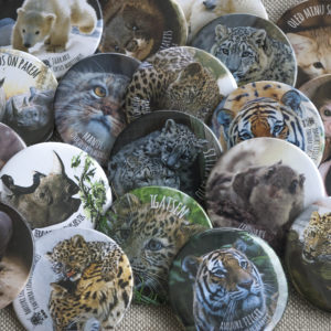 Badges and magnets